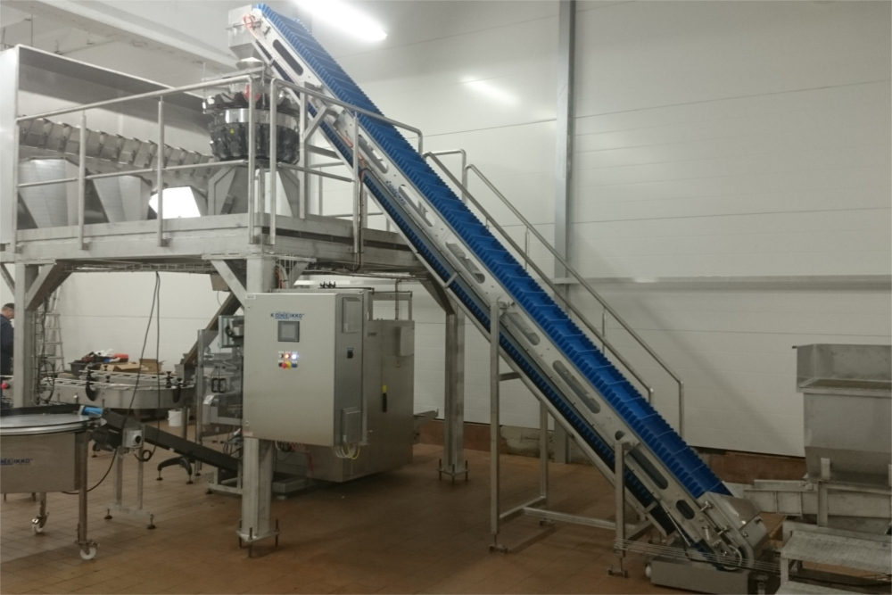 Vertical packing line